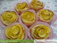 Rosas de manzana de Thermomix