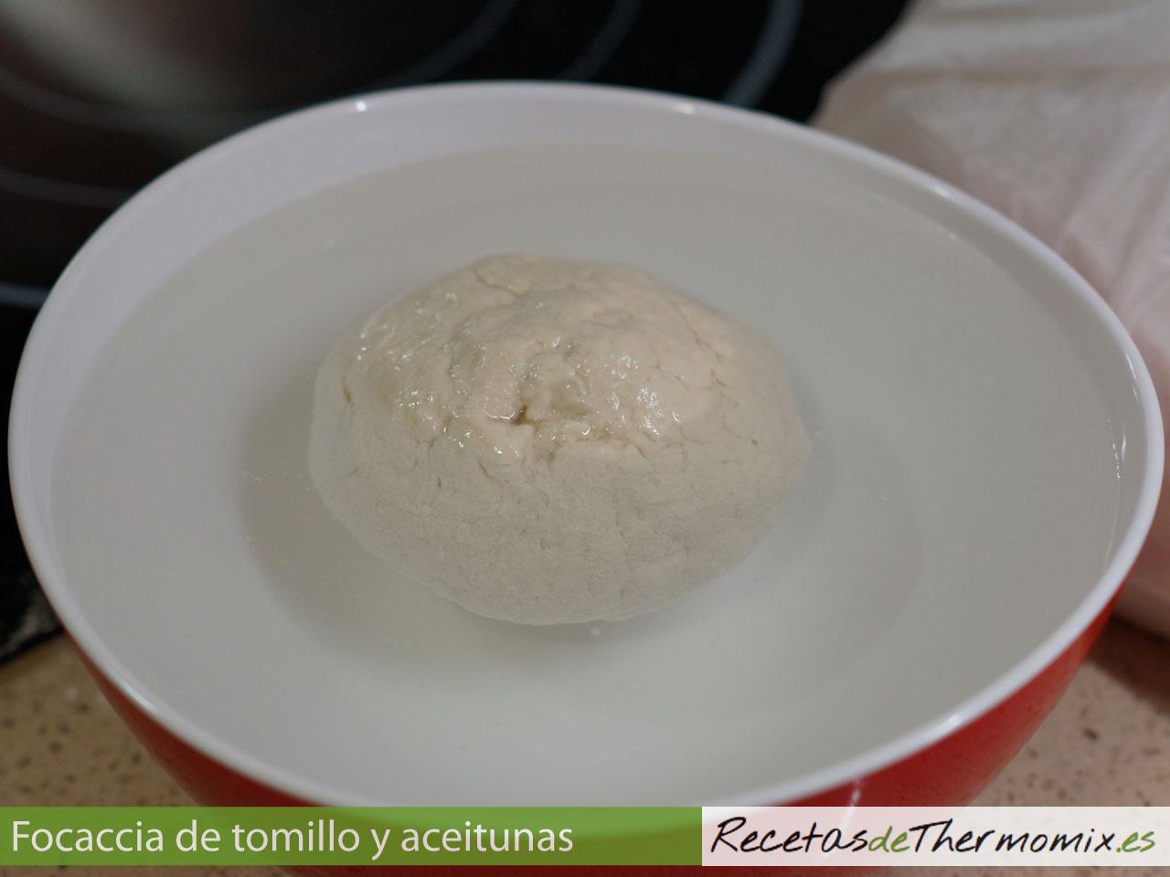 Bola de masa de Focaccia de tomillo y aceitunas con Thermomix
