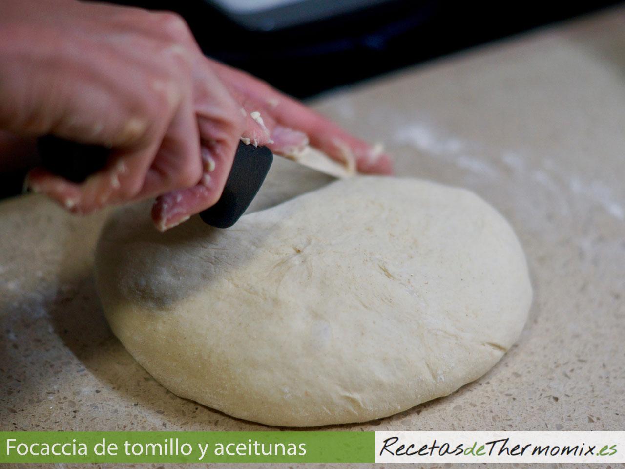 Cortar la masa de Focaccia de tomillo y aceitunas con Thermomix